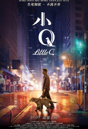 Little Q – 小Q