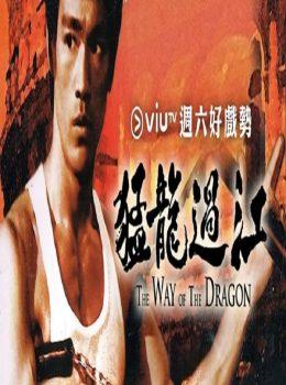 Way of the Dragon – 猛龍過江